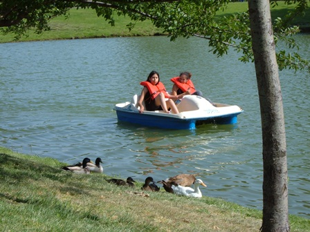 Things to do in ontario ca for Guasti park fishing