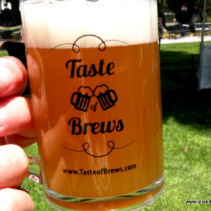 Taste of Brews 2013